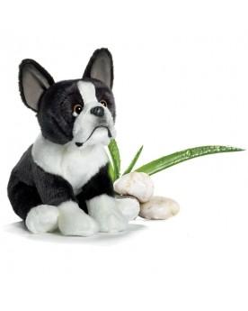 Bulldog français 22 cm ANIMA  –Serpent à Lunettes