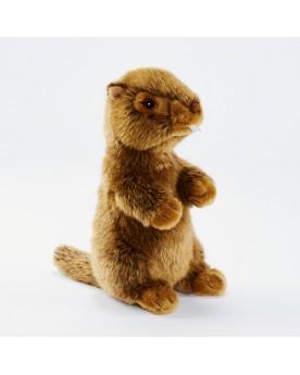 Marmotte 18 cm ANIMA  –Serpent à Lunettes