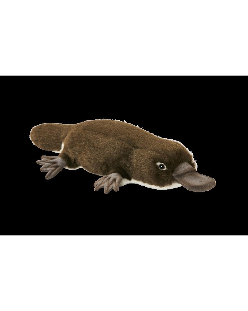 Ornithorynque 28 cm Hansa  –Serpent à Lunettes