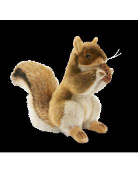Écureuil dressé 23 cm HANSA  –Serpent à Lunettes