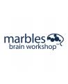 MARBLES BRAIN WORKSHOP